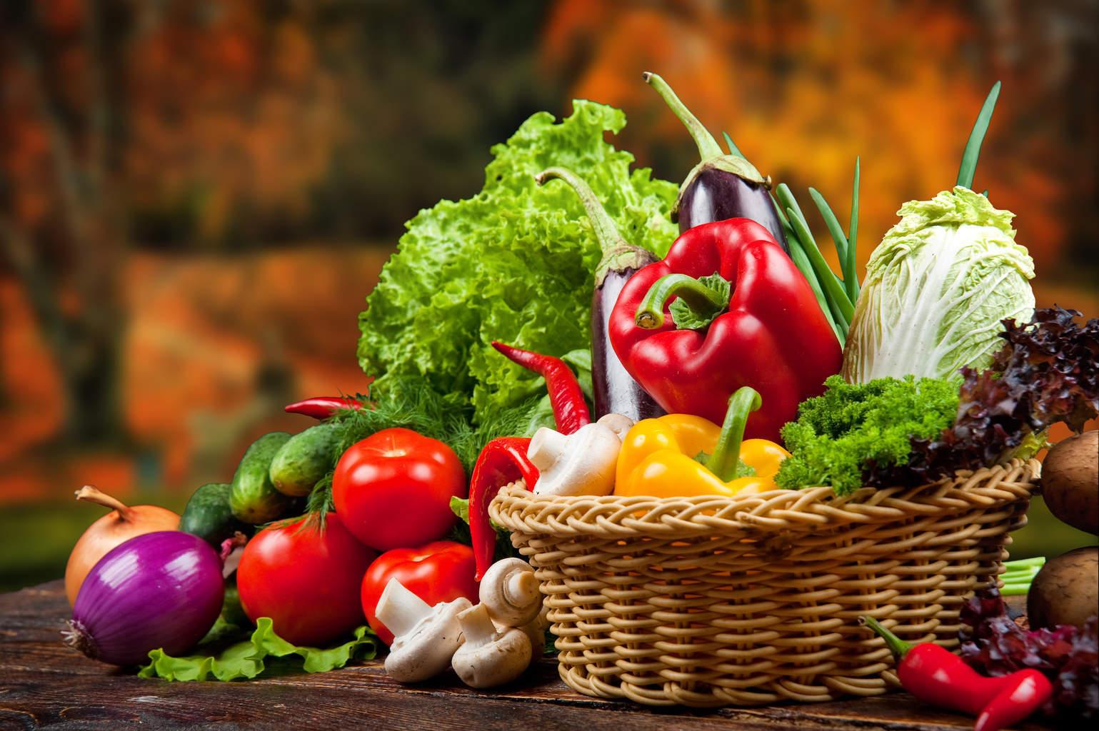 Macam-macam Sayuran Beserta Manfaatnya